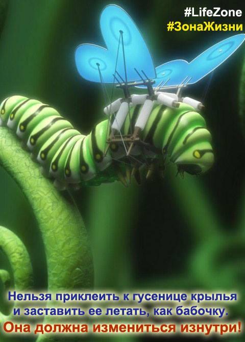 нельзя приклеить крылья гусенице и заставить летать! ей надо измениться внутри