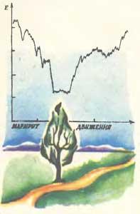Распределение электрического поля на маршруте «дорога — дерево — дорога». Так же меняется и активность реакции оператора БЛМ